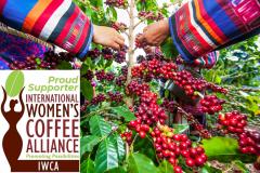 Coffee-beans-logo-Copy-2