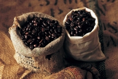 How-to-store-cofee-beans-368x240
